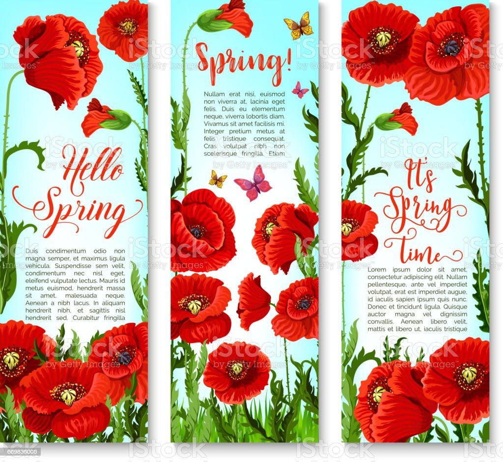Vector Banners Of Spring Poppy Flowers And Quotes Stock Vector Art