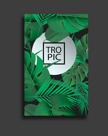 Vector Banners Set With Green Tropical Leaves On Black Background Exotic Botanical Design For Cosmetics Spa