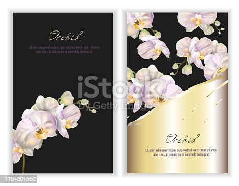 Vector banners set with Luxurious orchid flowers. Template for greeting cards, wedding decorations, invitation, sales, packaging. Spring or summer design. Place for text.