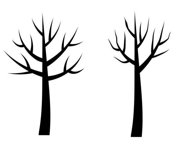vector kahler baum silhouetten, schwarze stilisierte bäume ohne blätter, keine blätter cartoon-bäume - winterruhe stock-grafiken, -clipart, -cartoons und -symbole