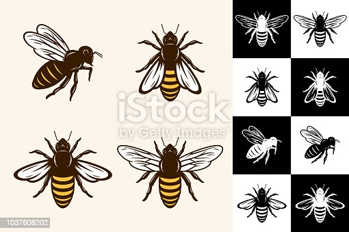 Vector bee icons collection on different backgrounds.