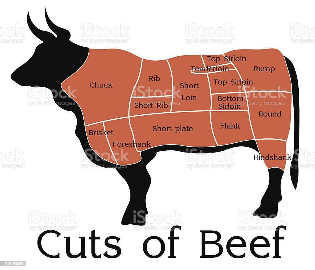 Vector Beef Cuts Chart vector art illustration