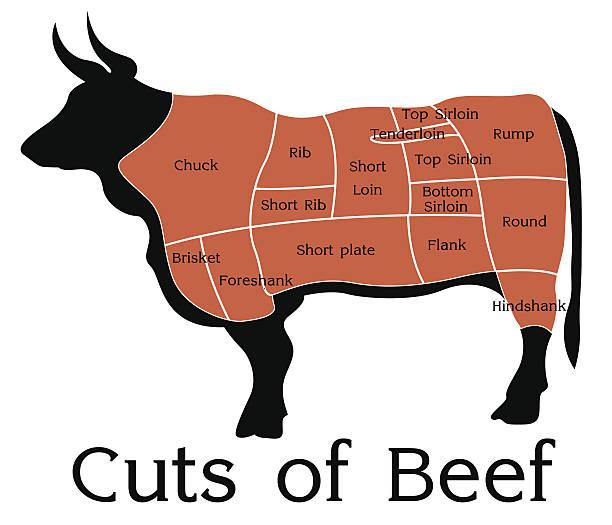 ilustrações de stock, clip art, desenhos animados e ícones de vetor gráfico de cortes de carne de vaca - beef angus