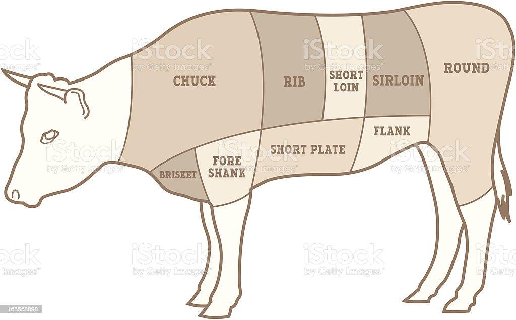 Vector Beef Diagram vector art illustration