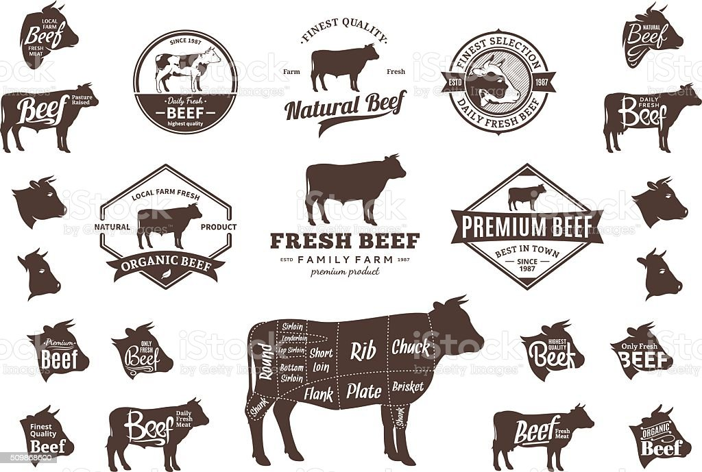 Vector Beef Labels, Icons, Charts and Design Elements vector art illustration