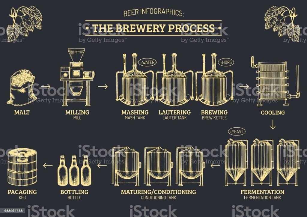 Vector cerveja infográficos com ilustrações de processo de cervejaria. Projeto de produção de cerveja. Regime esboçado de produção de cerveja. - ilustração de arte em vetor