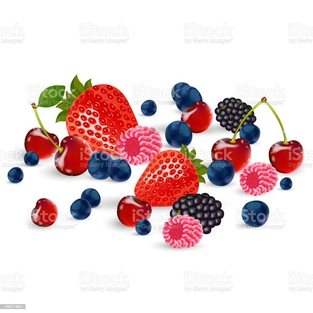 Vector berries royalty-free vector berries stock vector art & more images of backgrounds