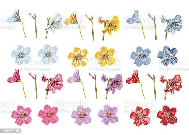 Vector big collection flowers violet blue red pink yellow vector id491647180?b=1&k=6&m=491647180&s=612x612&h=wbwsdfkh2lxufwx4yh3khvnpsa sg23koudaujvcfli=