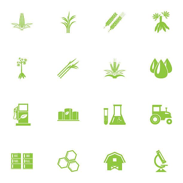 illustrazioni stock, clip art, cartoni animati e icone di tendenza di vettoriale bio carburanti raffineria divisione, diesel, icone bio - canna da zucchero
