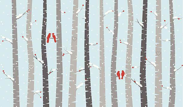 stockillustraties, clipart, cartoons en iconen met vector birch or aspen trees with snow and love birds - vogel herfst