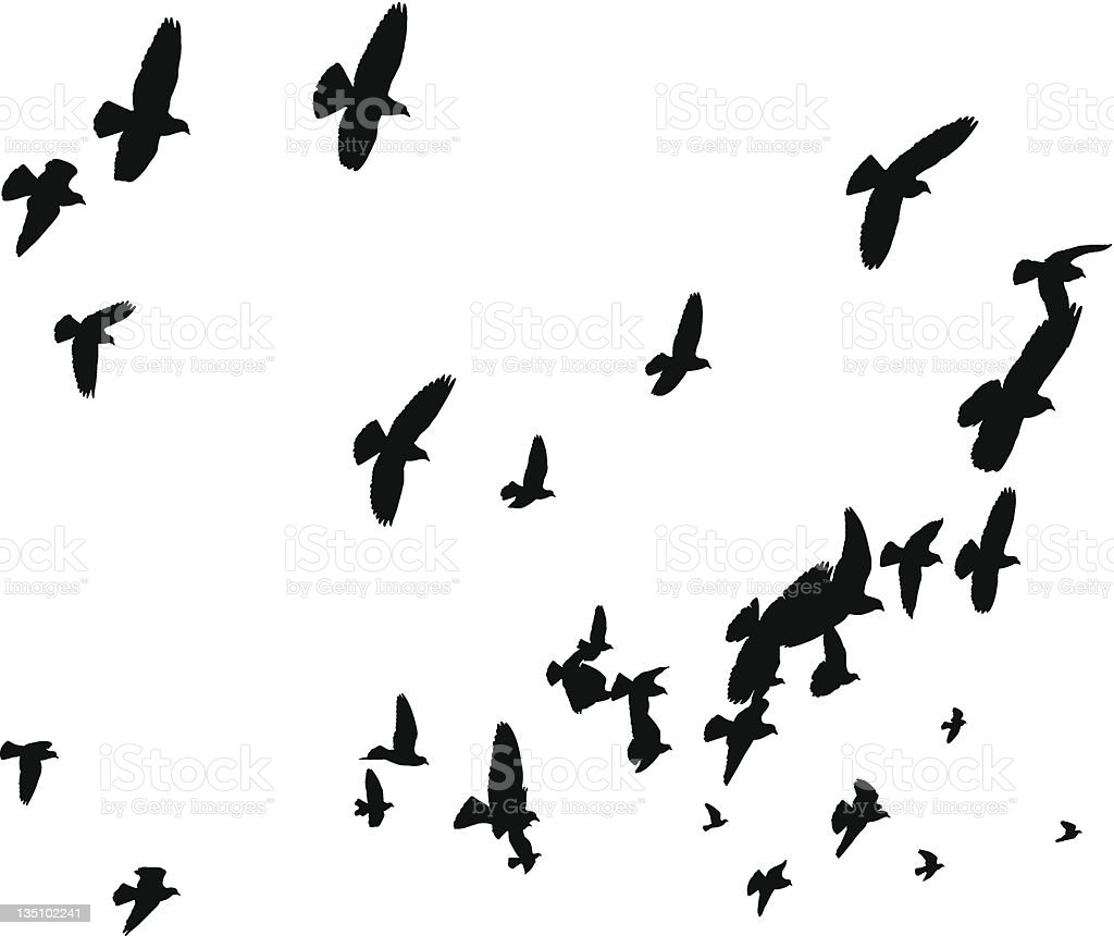 Vector Birds Flying Away - Peace to the World vector art illustration