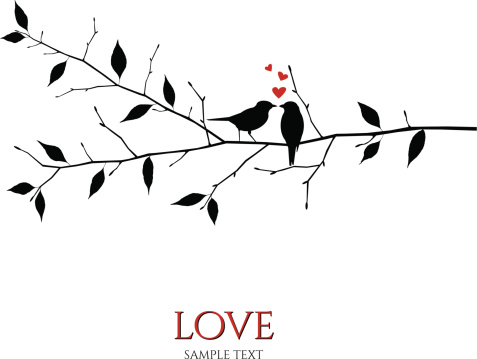 vector birds on branch - love and romance concept