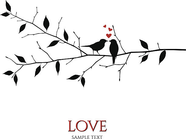 vector birds on branch - love and romance concept - birds stock illustrations