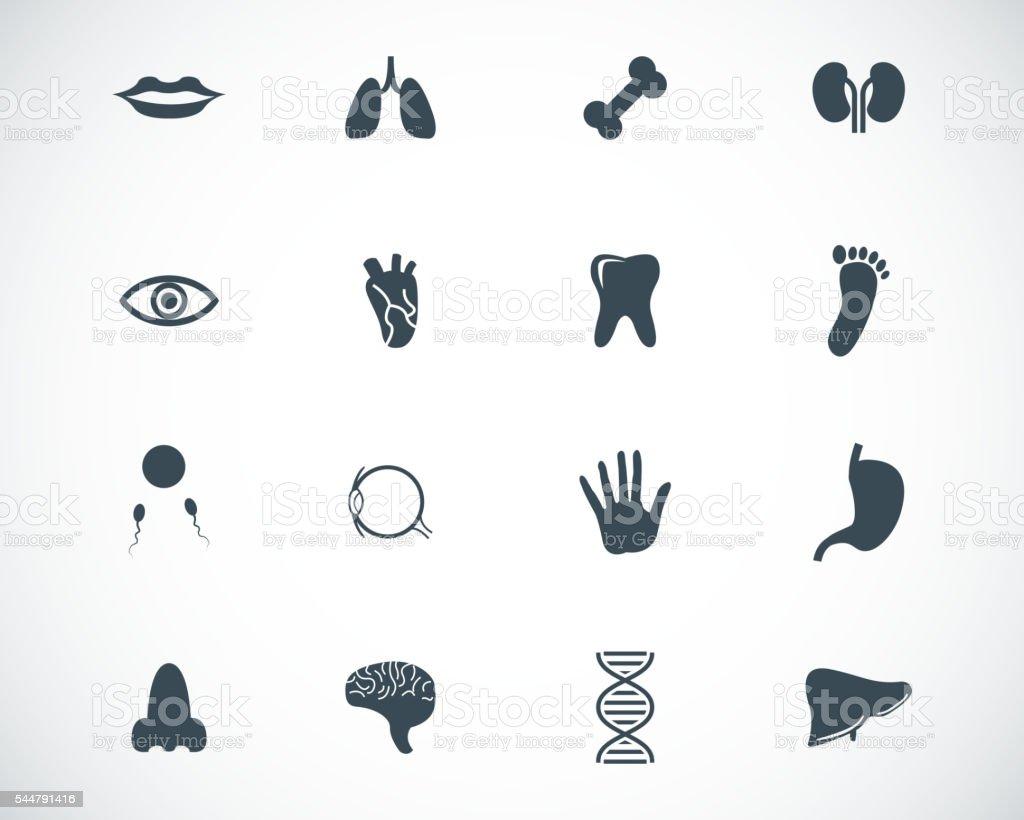 Vettore nero set di icone di anatomia - illustrazione arte vettoriale