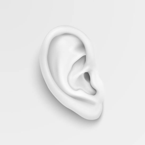 vector black and white background with realistic human ear closeup. design template of body part, human organ for web, app, posters, infographics etc - крупный план stock illustrations