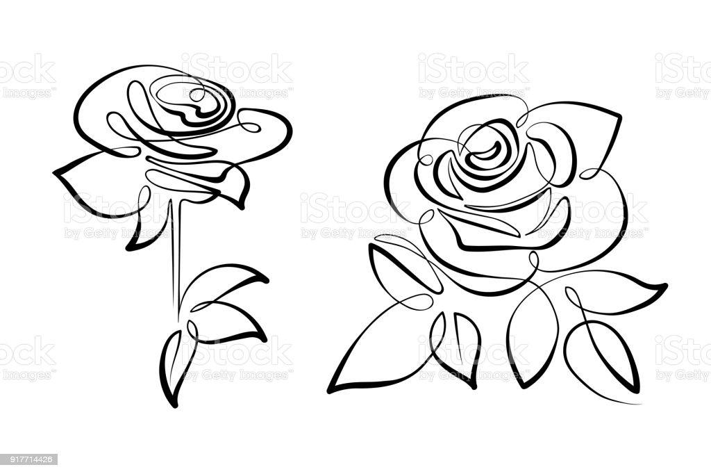Ilustración De Blanco Y Negro De Vectores Flores Rosas Y