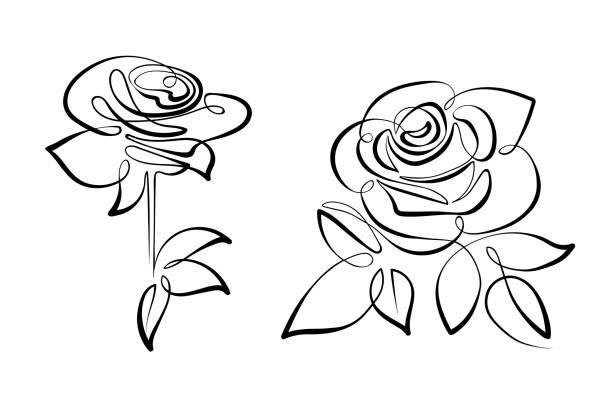 Royalty Free Rose Line Art Clip Art Vector Images Illustrations
