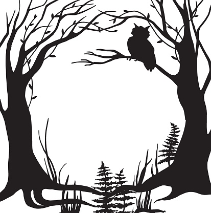 vector black and white illustration, frame. fabulous, magical forest. silhouette of trees, herbs, silhouette of an owl sitting on a tree. design for halloween. frame for cards, books.