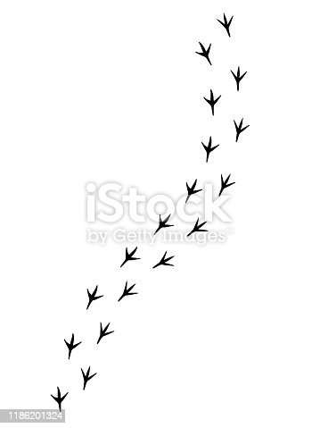 Vector black bird paw steps road isolated on white background