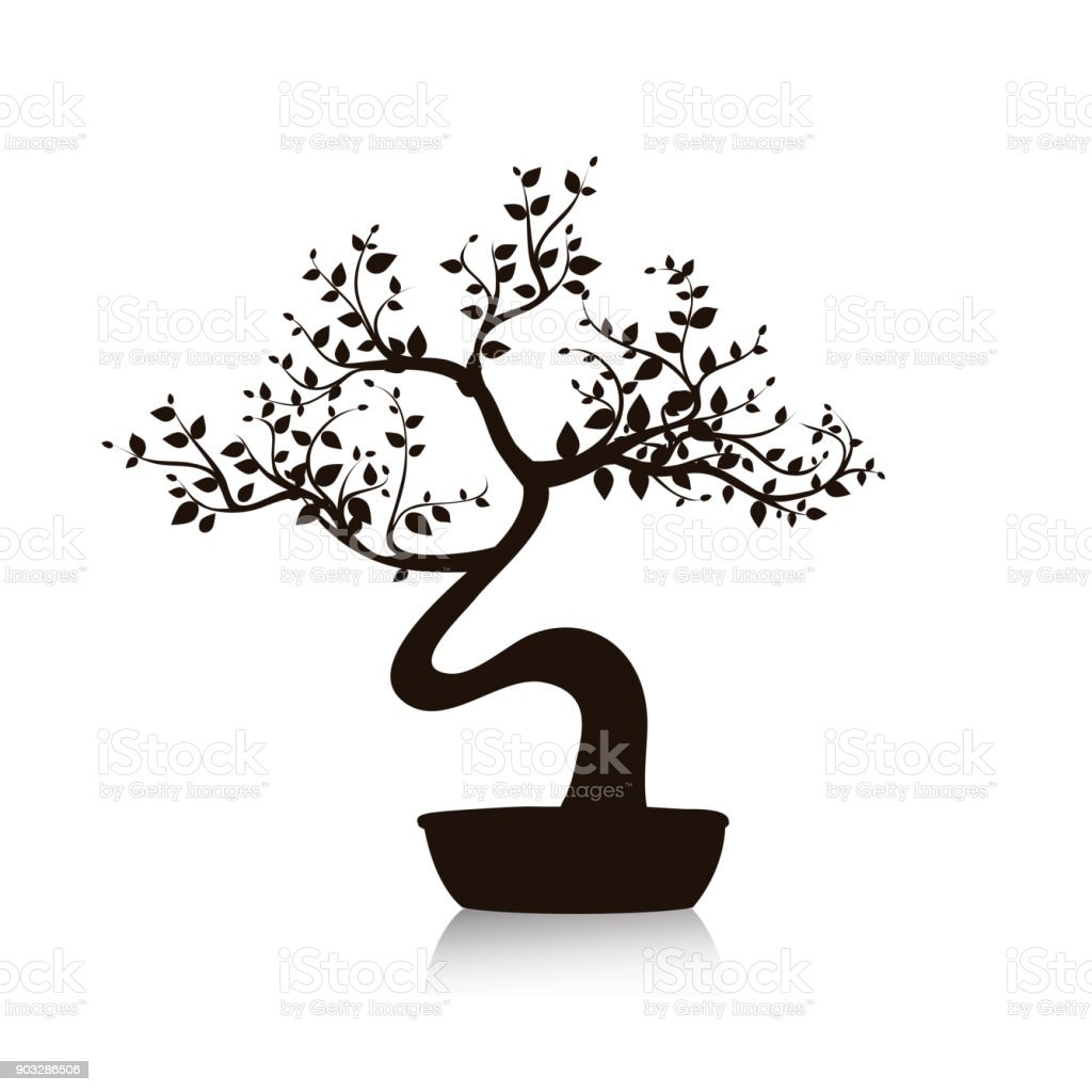 Vector black bonsai tree in a pot. Isolated illustration on white - illustrazione arte vettoriale