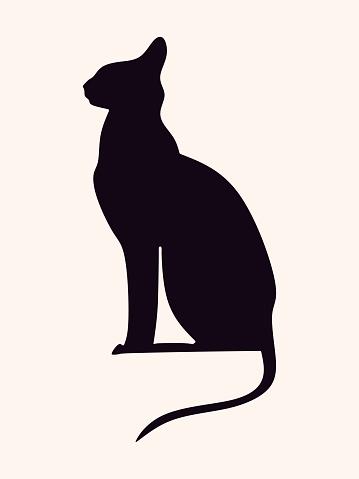 Vector black cat.