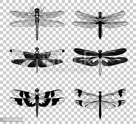 Black Dragonfly icons set isolated on transparent background. Vector illustration.