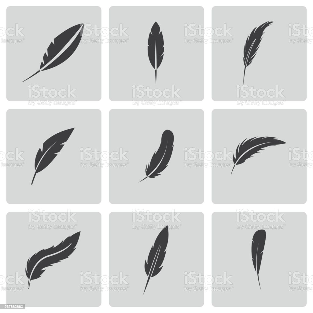 Vector black feather icons set vector art illustration
