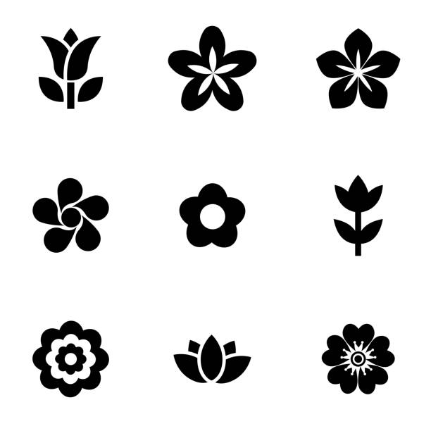 Vector black flowers icon set vector art illustration