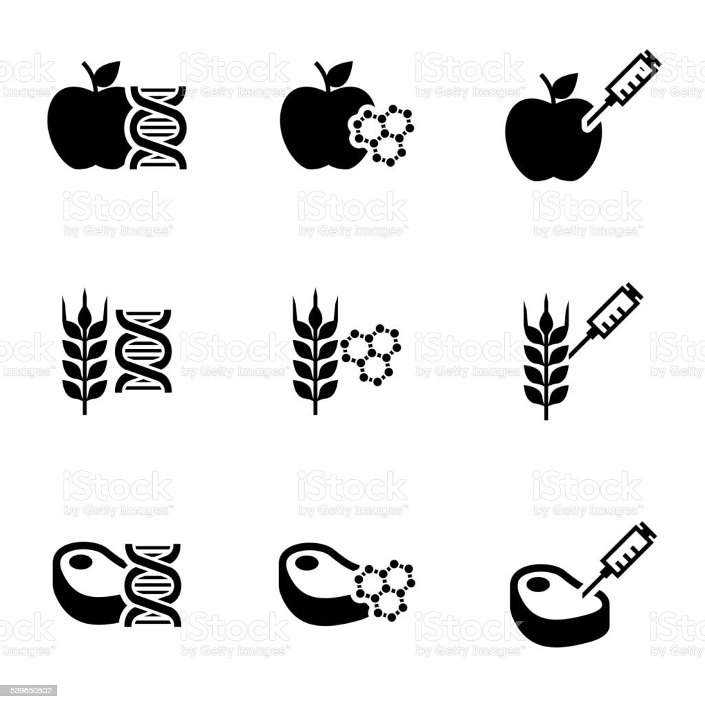 Vetor preto alimentos geneticamente modyfied Conjunto de ícones - ilustração de arte em vetor