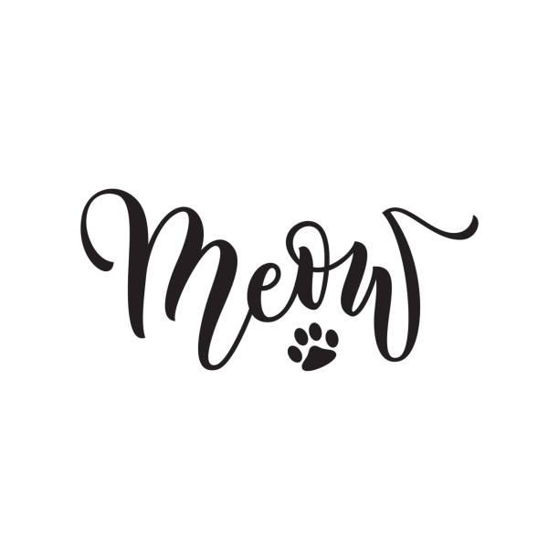 stockillustraties, clipart, cartoons en iconen met vector black lettering meow with cute pink cat paw - miauwen