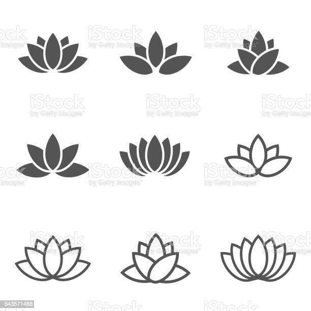 Vector black lotus icons set on white background vector id543571488?b=1&k=6&m=543571488&s=612x612&h=5k0raslaqjyzdyedlnfivfg3whfoedn9n5mfr39oe5k=