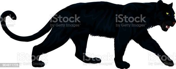 Vector black panther vector id904611228?b=1&k=6&m=904611228&s=612x612&h=v tqufnwdyt9v85vnssiligx ak0tezsjg5kmu cbss=