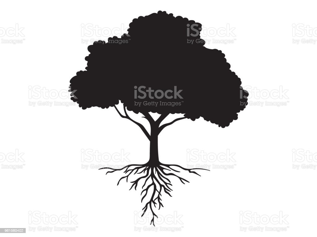 Vector black shape silhouette of a tree with roots
