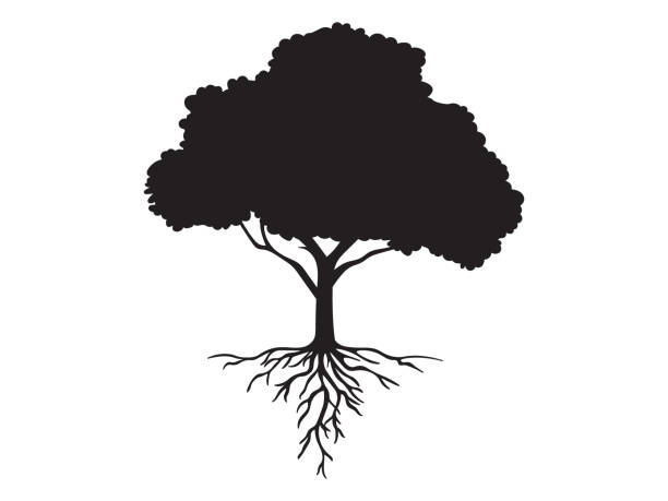 vector black shape silhouette of a tree with roots - trees stock illustrations