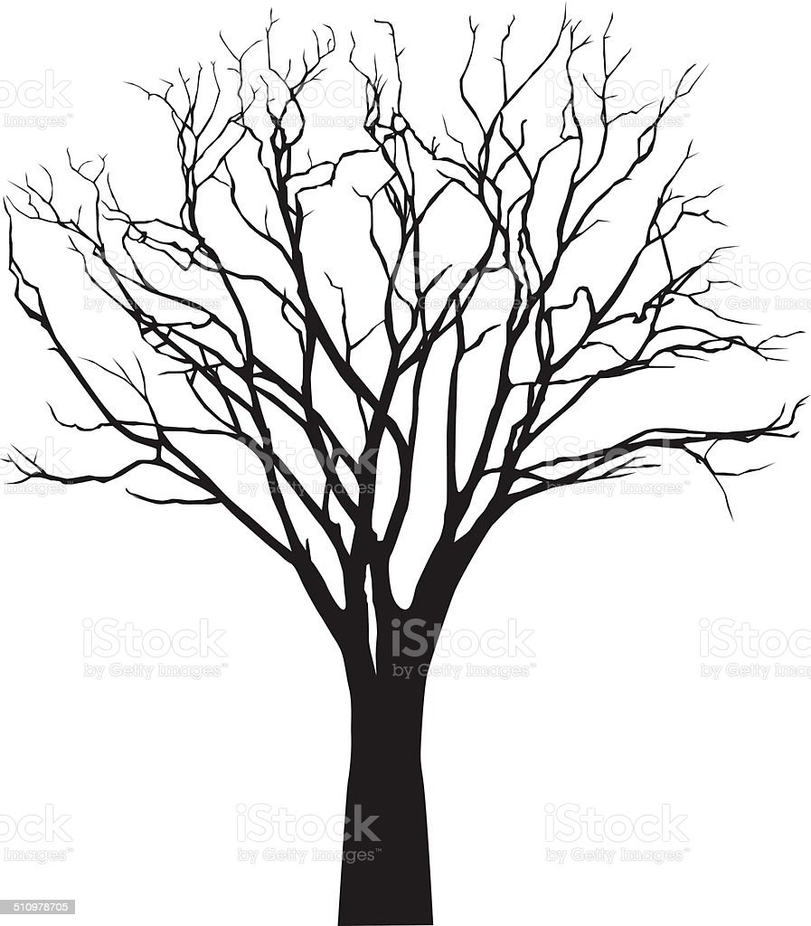 vector black silhouette of a bare tree vector art illustration