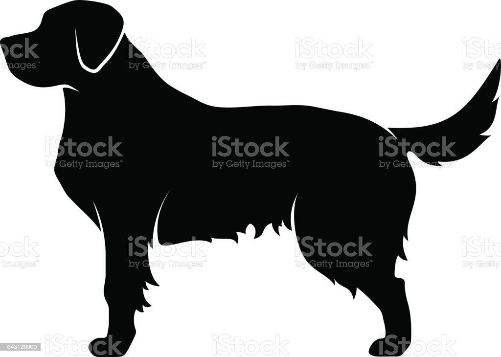 royalty free golden retriever clip art vector images rh istockphoto com dog vector art dog vector art