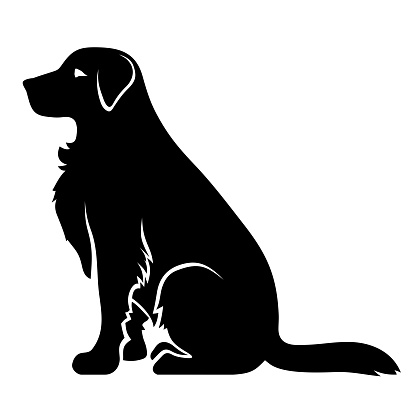 Vector black silhouette of a sitting retriever dog isolated on a white background.