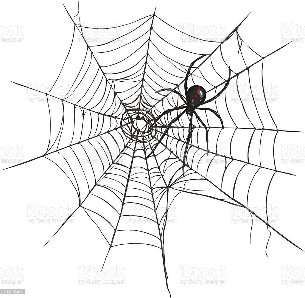 Vector Black Widow Spider On Spiders Web Stock Vector Art & More ...