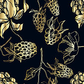 Vector Blackberry healthy food. Black and white engraved ink art. Seamless background pattern. Fabric wallpaper print texture on white background.