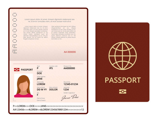 Vector Blank open passport template. International passport with sample personal data page. Document for travel and immigration. Isolated vector illustration. Vector Blank open passport template. International passport with sample personal data page. Document for travel and immigration. Isolated vector illustration airport silhouettes stock illustrations