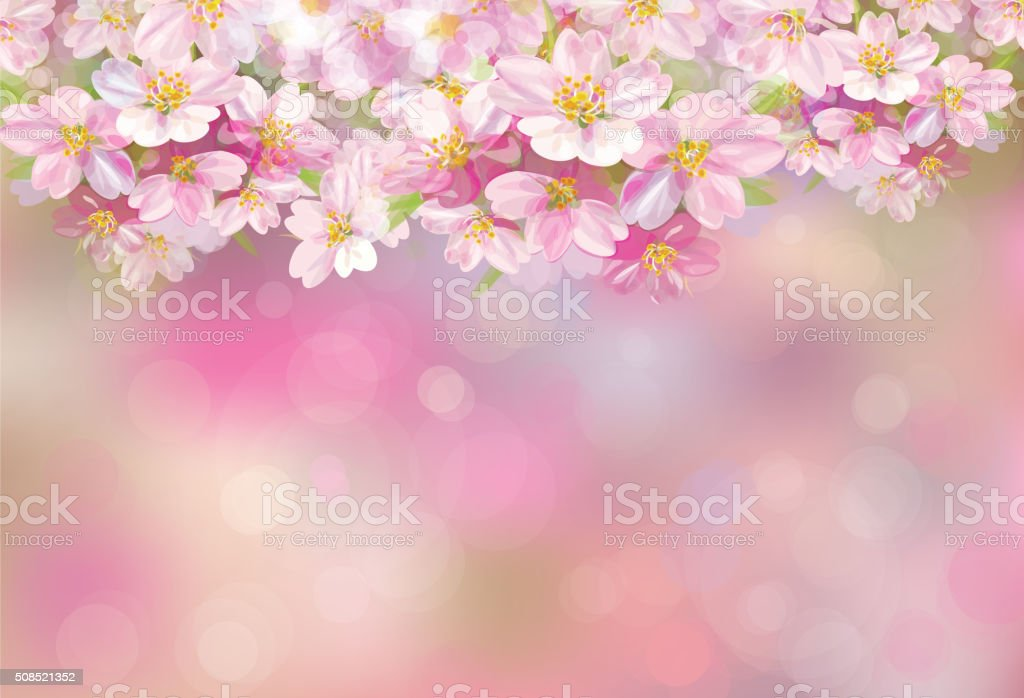 Vector blossoming sakura background. vector art illustration