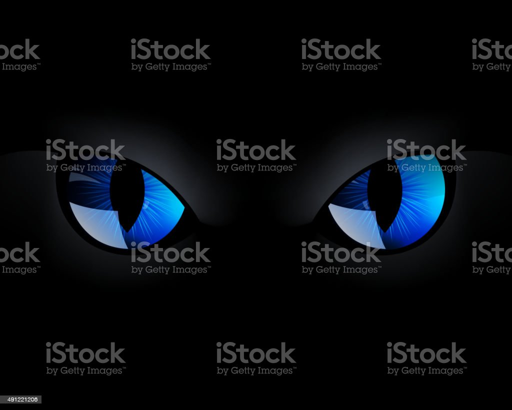 Vector Blue Cat Eyes in the Dark Night vector art illustration