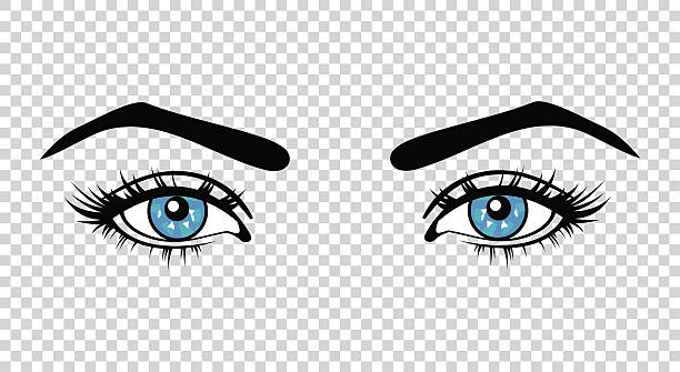 vector blue female eyes with long lashes and make up - крупный план stock illustrations