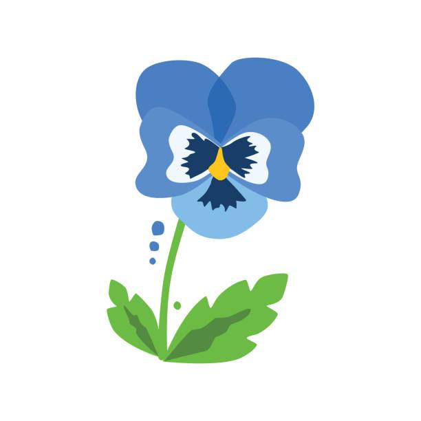 vector blue heartsease with leaves vector art illustration