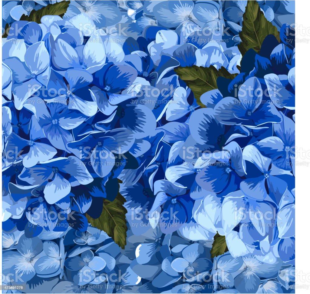 Ilustracion De Hortensia Realista Vector Azul Lavanda Ilustraciones