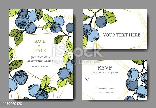 Vector Blueberry blue and green engraved ink art. Berries and green leaves. Wedding background card floral decorative border. Thank you, rsvp, invitation elegant card illustration graphic set banner.