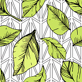 Vector Blueberry green and black engraved ink art. Green leaves. Leaf plant botanical garden floral foliage. Seamless background pattern. Fabric wallpaper print texture.