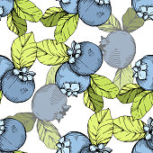 Vector Blueberry green and blue engraved ink art. Berries and green leaves. Leaf plant botanical garden floral foliage. Seamless background pattern. Fabric wallpaper print texture.