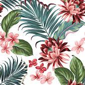 Vector botanic exotic design with large lotus, palms, frangipani, elephat ears.