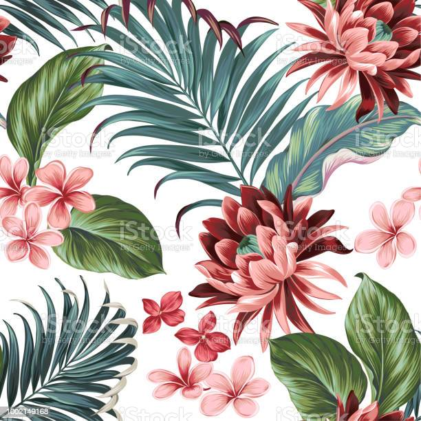 Vector botanic exotic design with large lotus palms frangipani ears vector id1002149168?b=1&k=6&m=1002149168&s=612x612&h=wyatzy0r4twul6 enq2rtwplnxazjtfqoepsho6ezb8=